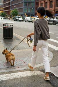 woman walking dog on a lead