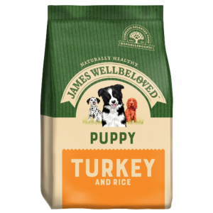 JW Turkey Puppy
