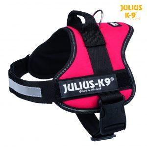 Julius-K9 Powerharness red