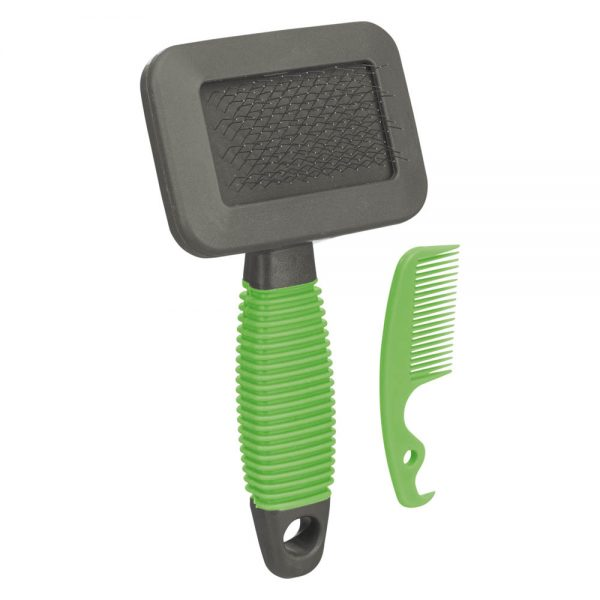 Small Animal Soft Brush and comb