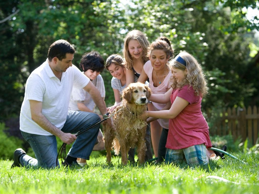 family on the grass with dog