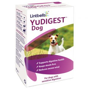 yudigest bioactive tablets