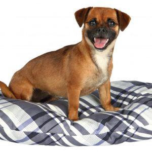 TRIXIE Jerry cushion