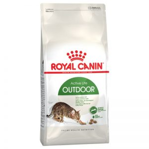 royal canin outdoor cat food image