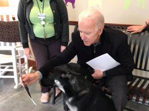 Joe Biden and dog