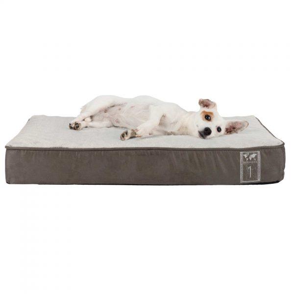 dog lyin gon comfortable dog mattress