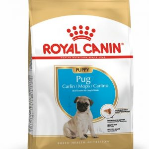 Royal Canin puppy pug