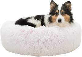 dog lying on pink fluffy bed
