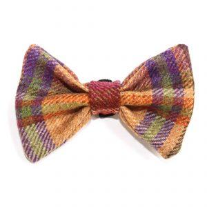 burgandy bow tie