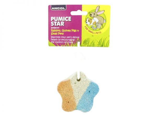 Ancol Pumice Star Gnaw