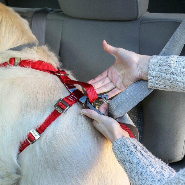 Enhanced Strength Tru-Fit Dog Car Harness