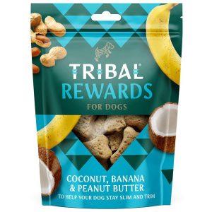 Tribal coconut ,banana & peanut butter treats