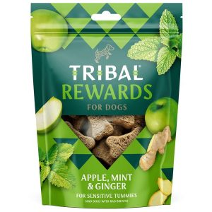 Tribal Apple, Mint & Ginger treats