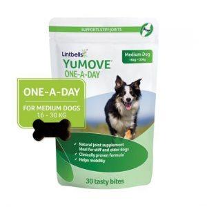 Lintbells YuMOVE ONE-A-DAY