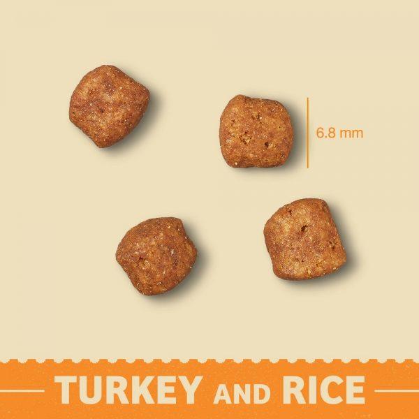 Senior Turkey & Rice Dry Cat Food