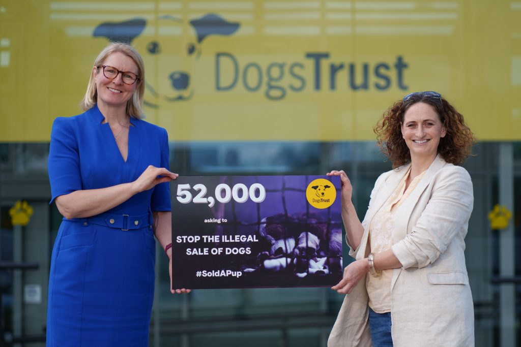 Dogs Trust Sold a Pup Campaign