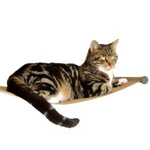 New Cat Hammock