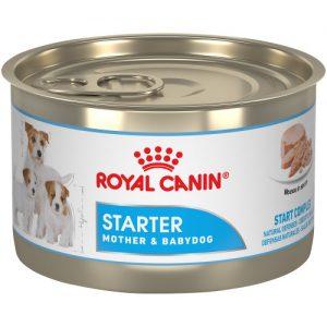 Royal Canin Starter Mother & Babydog Mousse In Sauce Canned Dog Food
