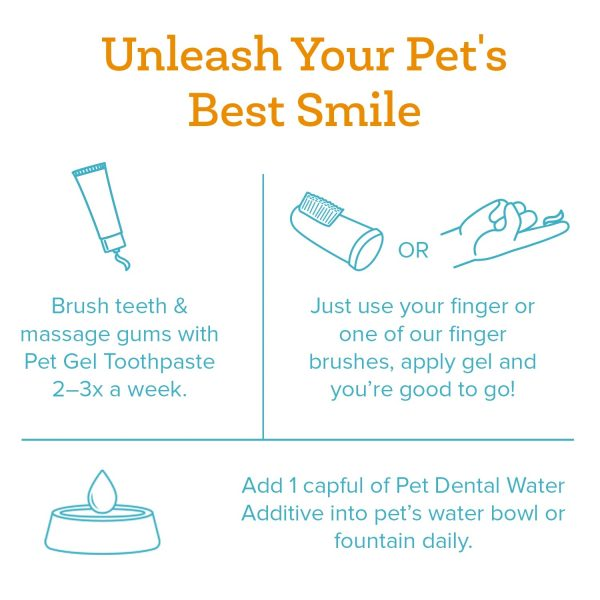 oxyfresh pet dental kit