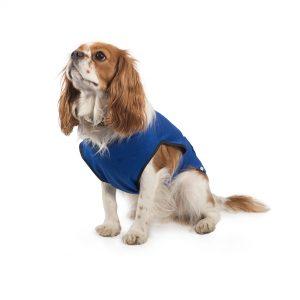 Ancol Dog Cooling Coat