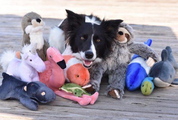 Fluff & Tuff plush toys
